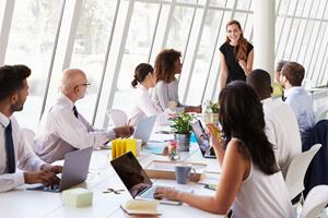 basic role of director and the board  ()