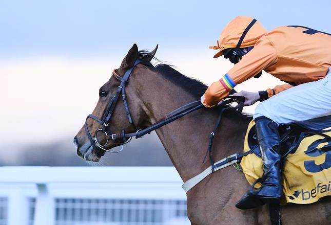 Horse racing LGBT ()