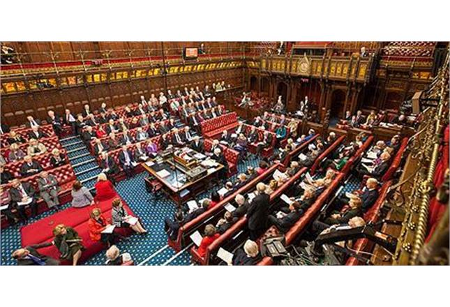 House of Lords (Parliament UK)