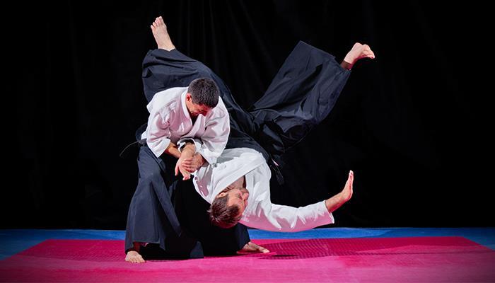 martial arts ()
