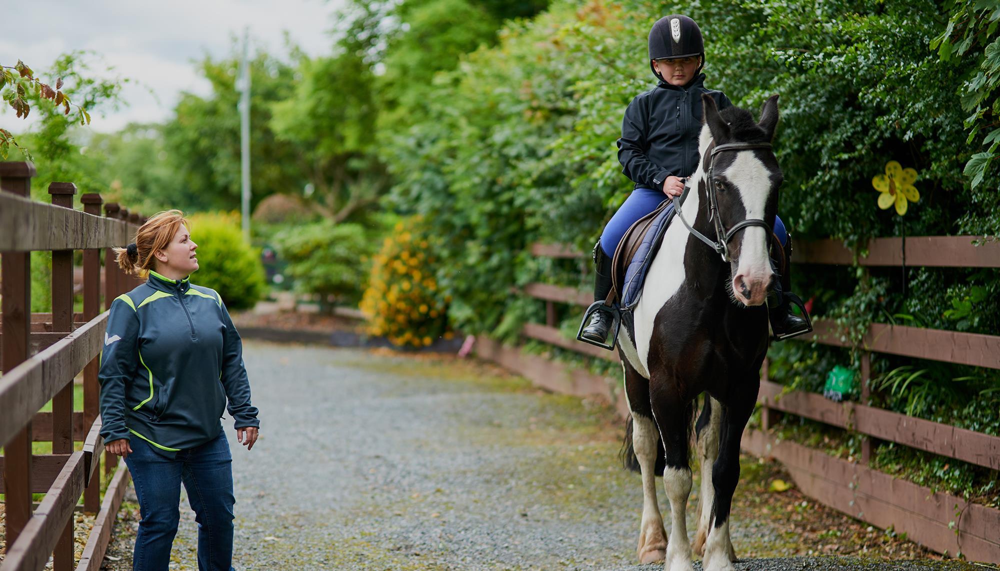 Volunteering Horses ()