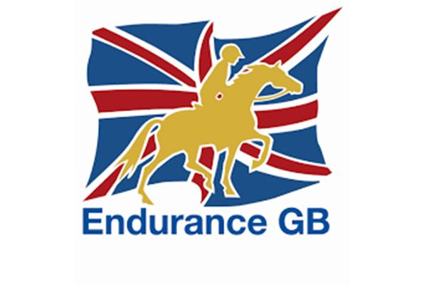 endurance  ()