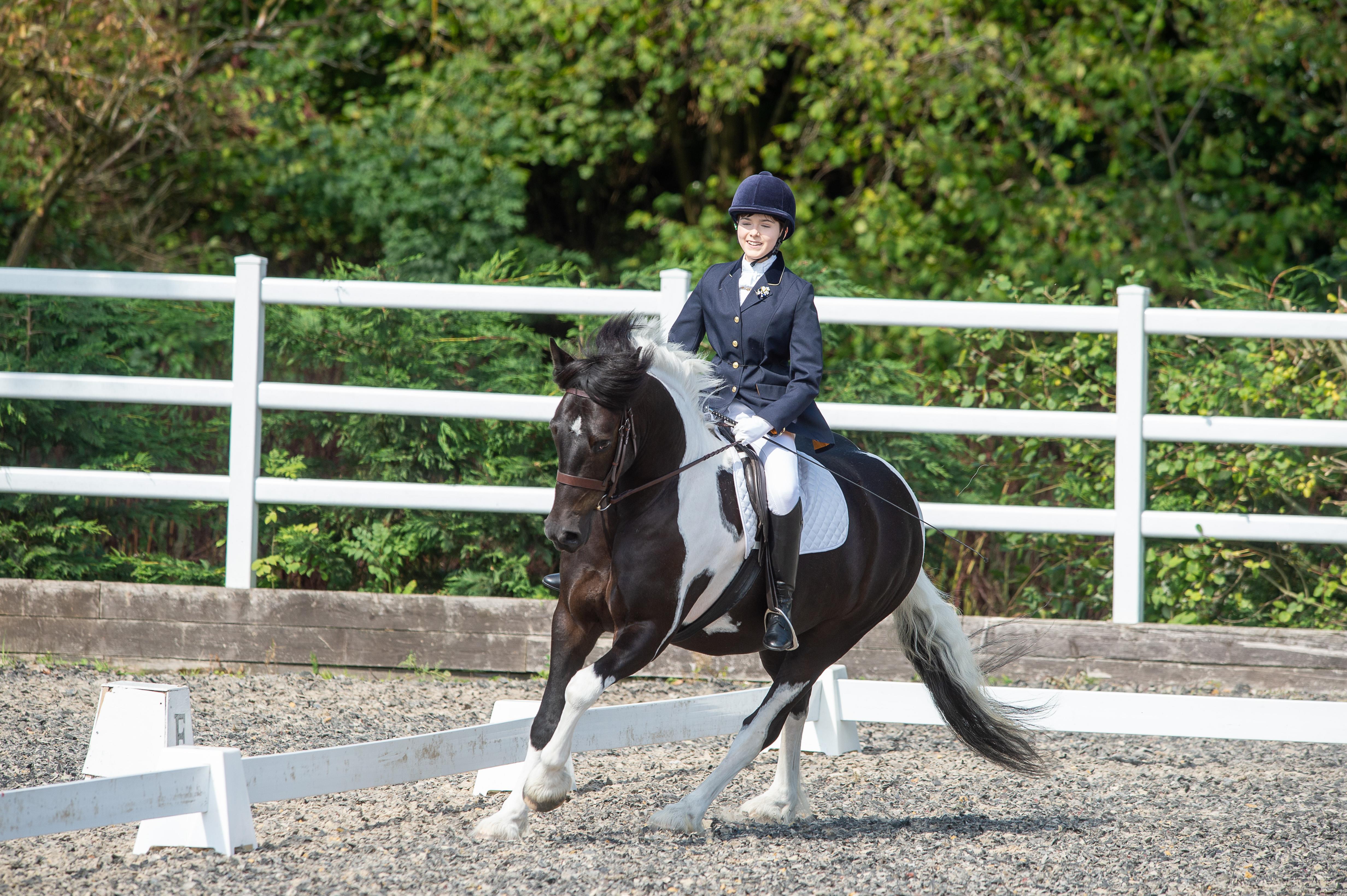 Equestrian 2 ()