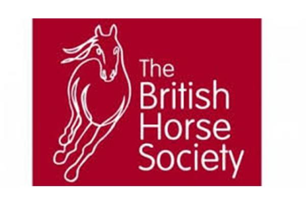 british horse society ()