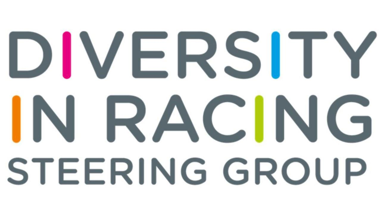 Member Submitted:  Diversity Steering Group Member ()